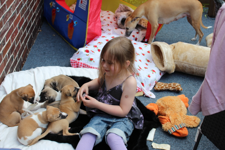 Esther und die Babies haben einen tollen Navhmittag miteinander verbracht