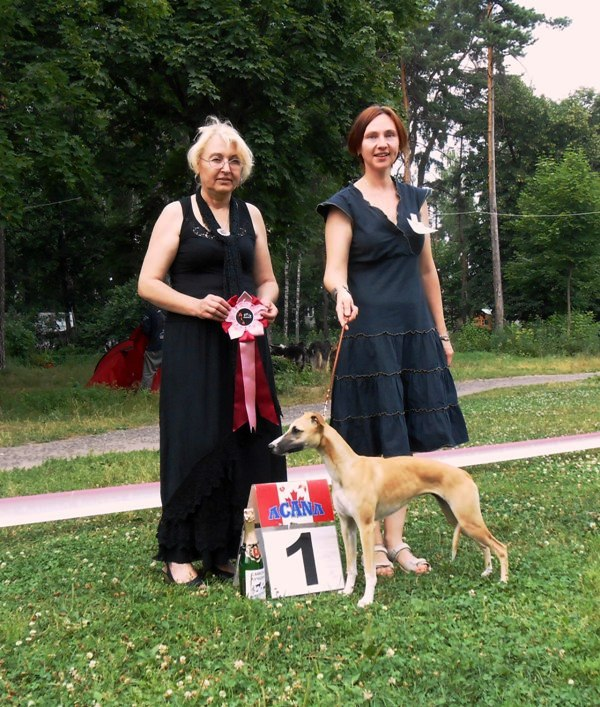 Noblesse Oblige best puppy. judge Galina Todorova from Bulgaria