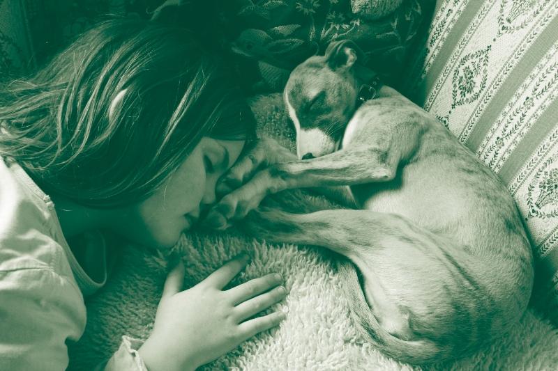 Wintersonne in Oldenburg-Nutshell & Molly, ein tolles Bild, vielen Dank liebe Katia