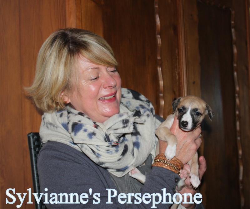 Persephone 4 Wochen alt