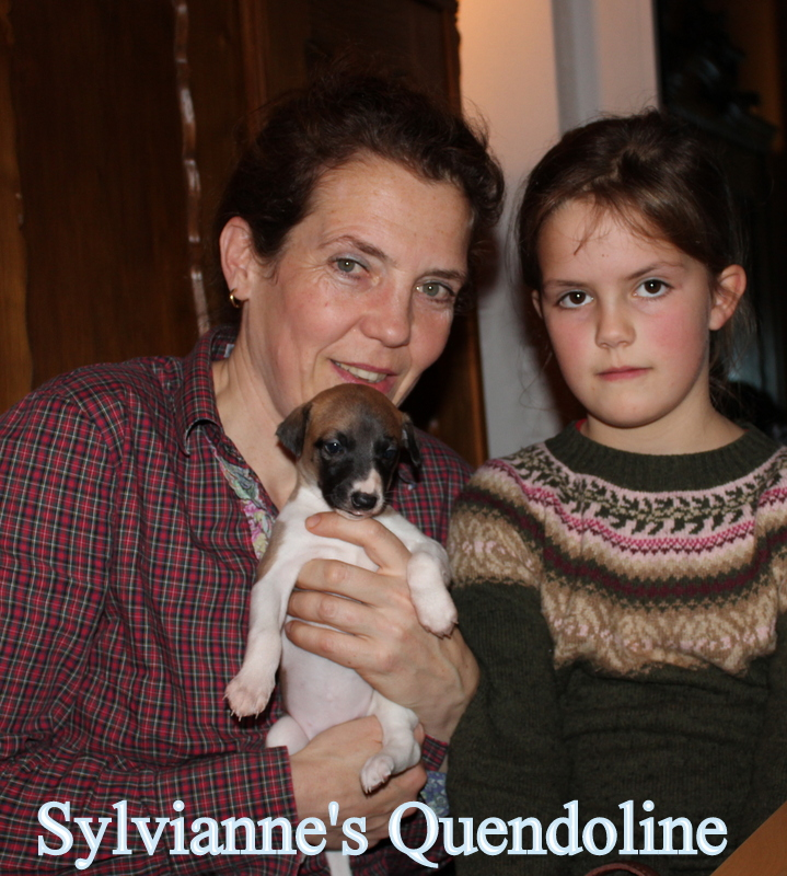 Quendoline 4 Wochen alt
