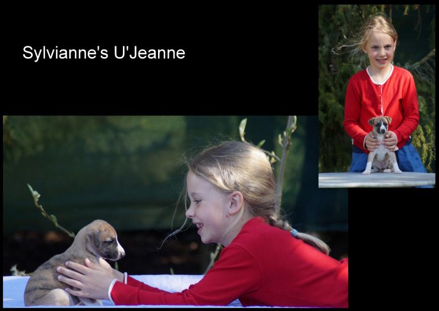U'Jeanne fast 5 Wochen alt